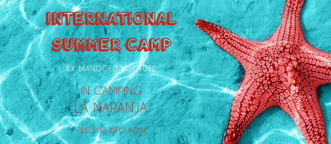 mangold summercamp
